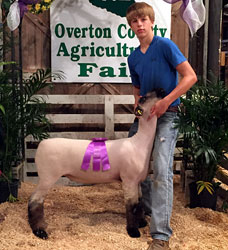 Tennessee Sheep Show Results