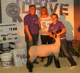 Iowa Show Lamb Results