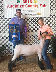 Ohio Show Lamb Results